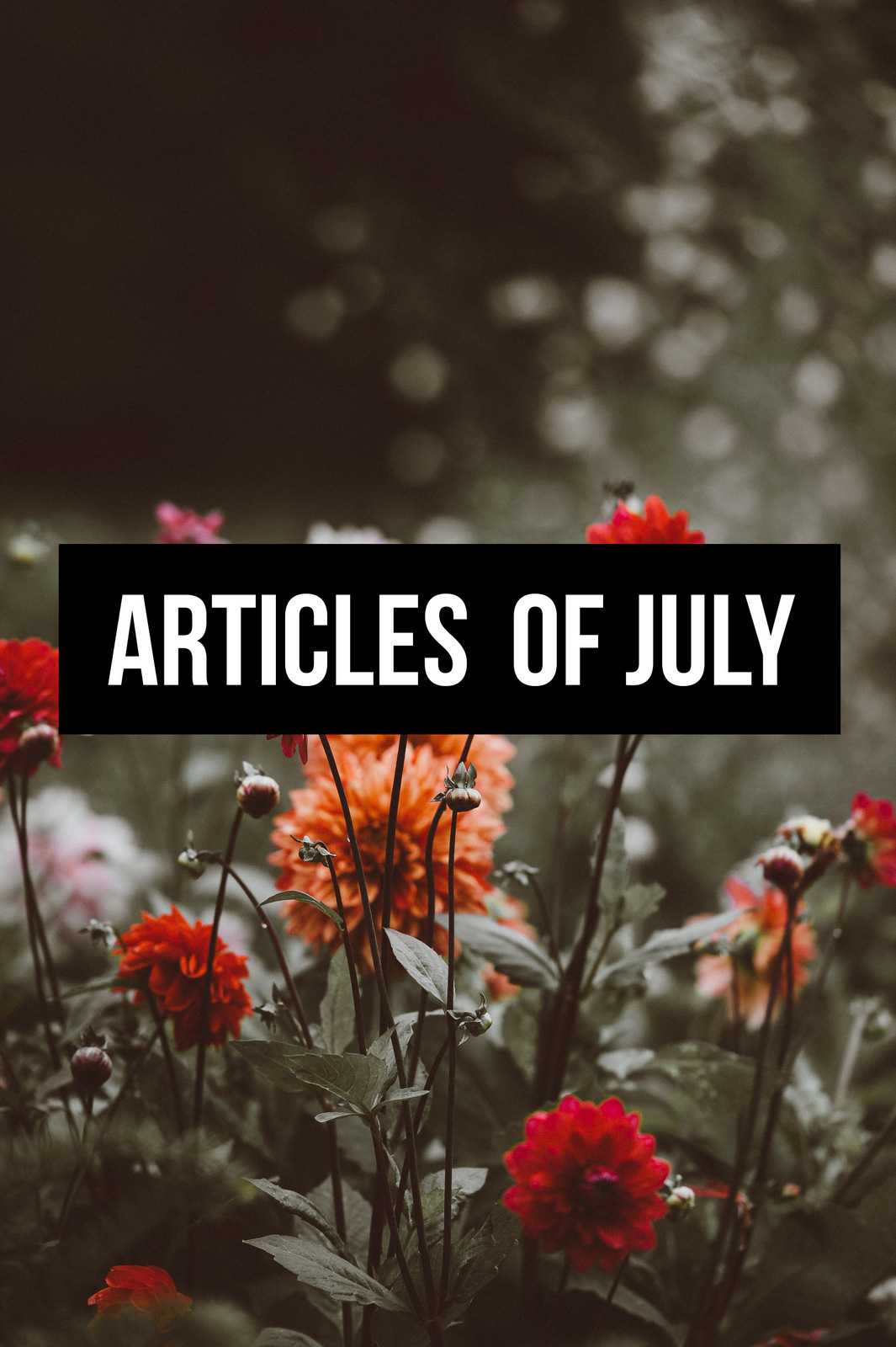 Article of July 2018