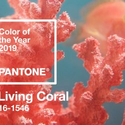 Color of the Year: Coral 2019