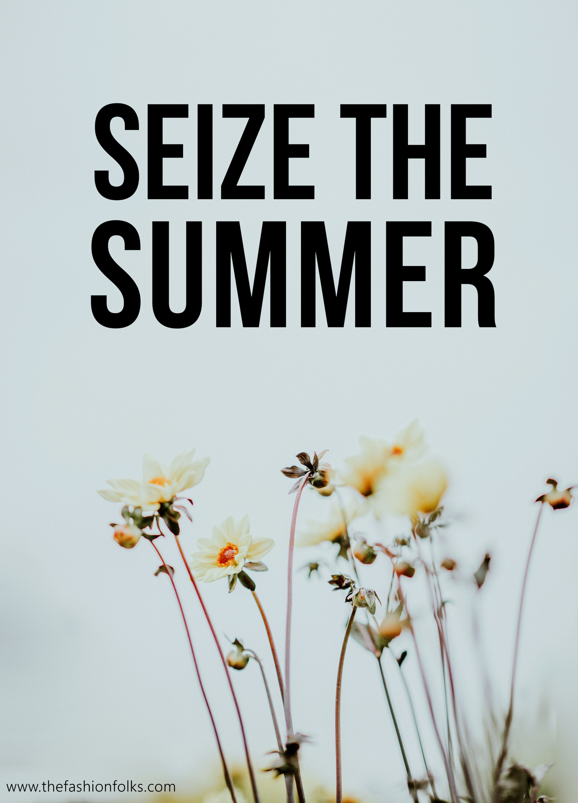 Seize The Summer