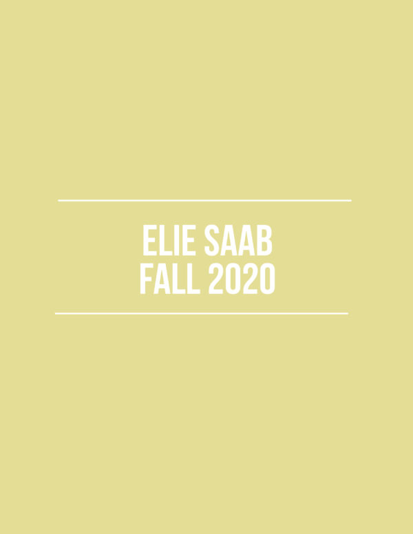 Elie Saab Fall 2020 – Review